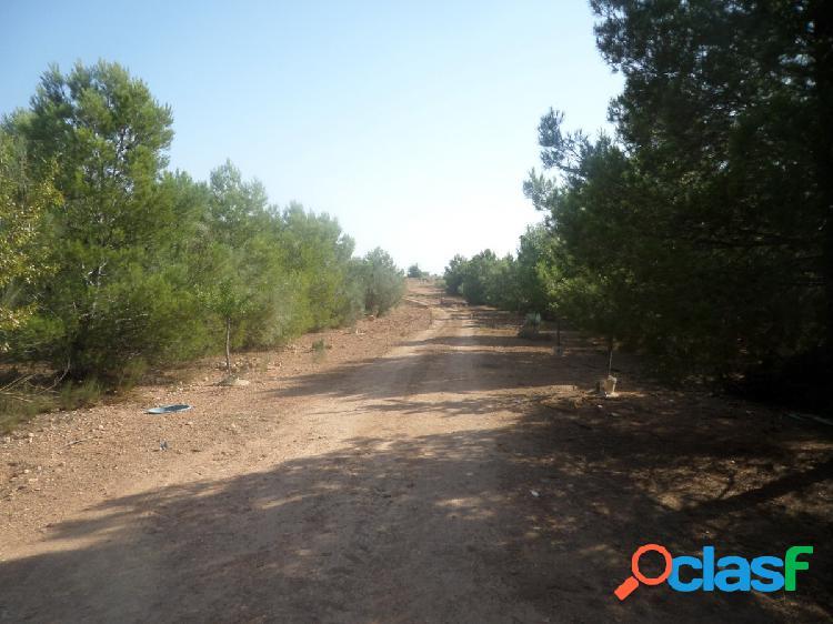 Se vende chalet en la carretera de Ossa de Montiel