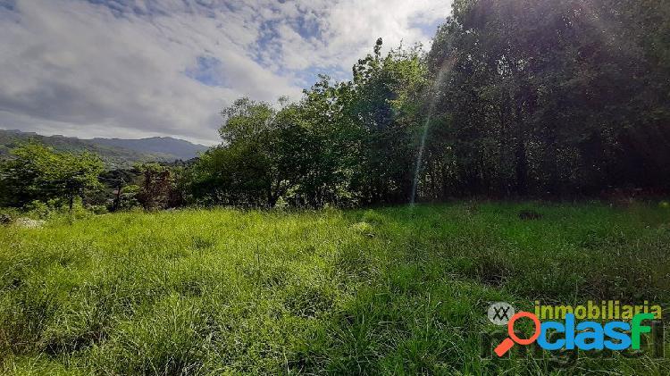 Se vende terreno en la zona de Andinas, Ribadedeva.