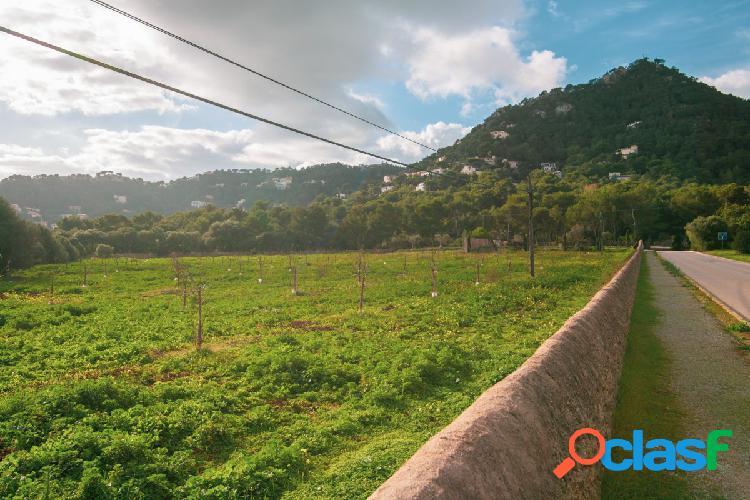 Terreno urbano en Canyamel