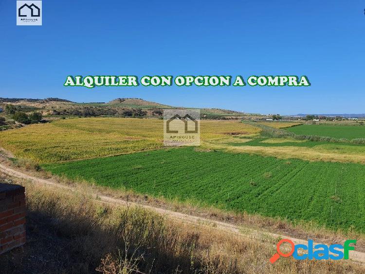 ALQUILER CON OPCION A COMPRA FINCA DE REGADIO EN LA VEGA DEL